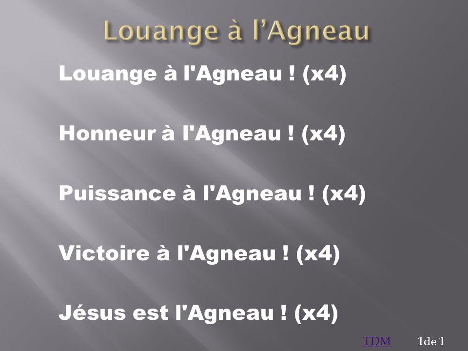 Louange à l'Agneau ! (x4) Honneur à l'Agneau ! (x4) Puissance à l'Agneau ! (x4) Victoire à l'Agneau ! (x4) Jésus est l'Agneau ! (x4) 1de 1TDM