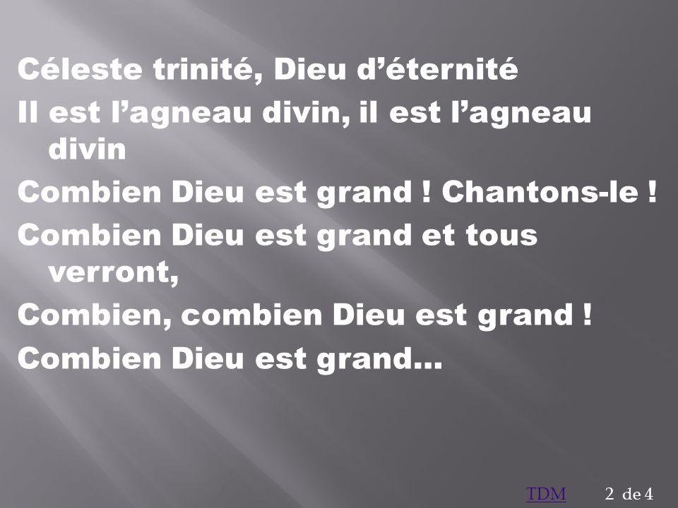 Céleste trinité, Dieu déternité Il est lagneau divin, il est lagneau divin Combien Dieu est grand ! Chantons-le ! Combien Dieu est grand et tous verro
