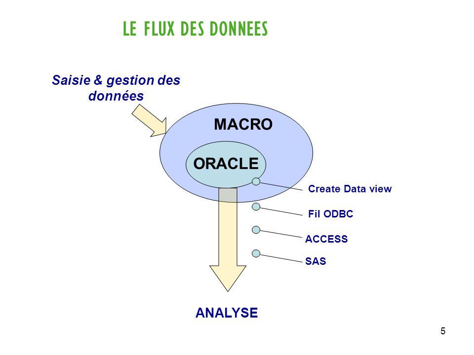 5 LE FLUX DES DONNEES ORACLE MACRO ANALYSE Saisie & gestion des données Create Data view Fil ODBC ACCESS SAS