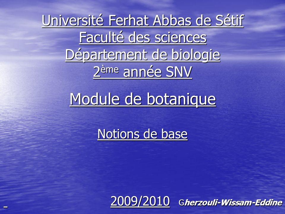 Cours 01 animaux animaux Être vivants végétaux végétaux procaryotes ( unicellulaires) procaryotes ( unicellulaires)Végétaux eucaryotes ( pluricellulaires) eucaryotes ( pluricellulaires)