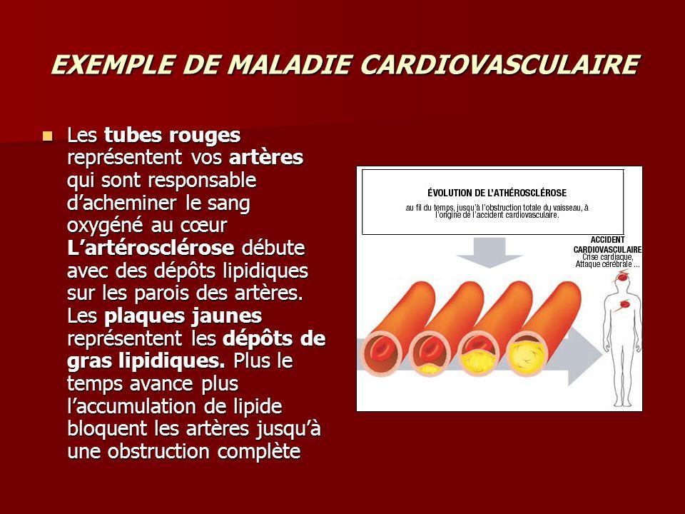 EXEMPLE DE MALADIE CARDIOVASCULAIRE Les tubes rouges représentent vos artères qui sont responsable dacheminer le sang oxygéné au cœur Lartérosclérose