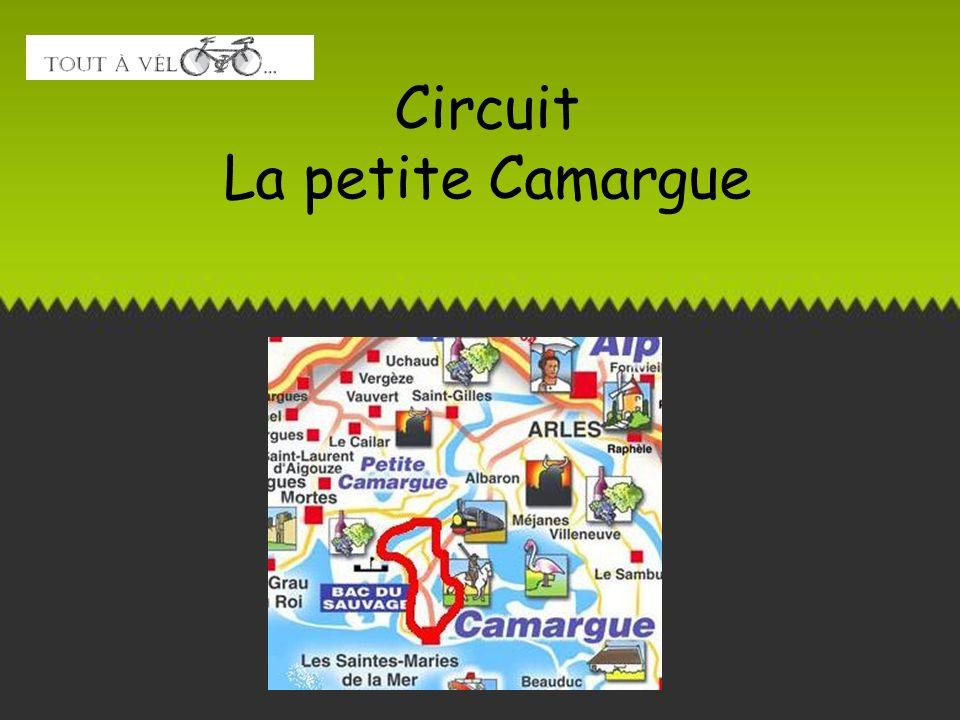 Circuit La petite Camargue