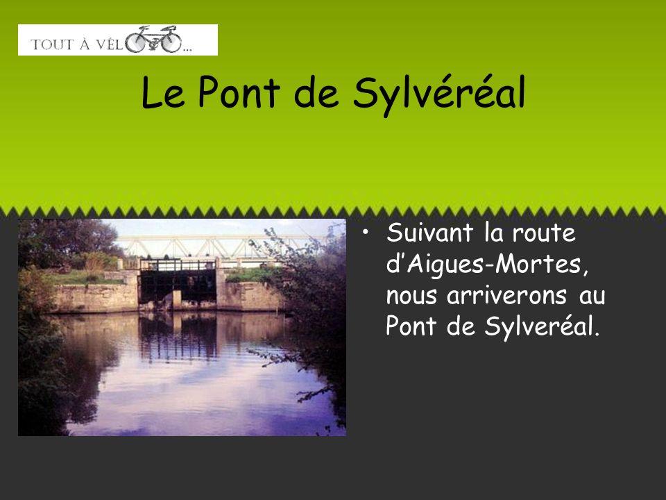 Le Pont de Sylvéréal Suivant la route dAigues-Mortes, nous arriverons au Pont de Sylveréal.