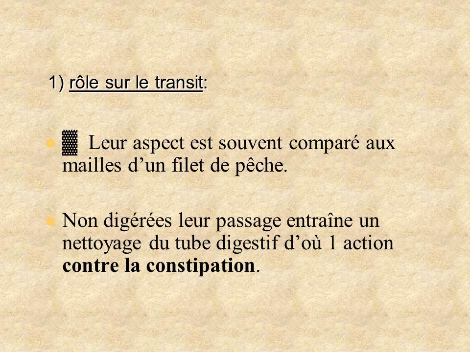 1) rôle sur le transit: 1) rôle sur le transit: Leur aspect est souvent comparé aux mailles dun filet de pêche. Non digérées leur passage entraîne un