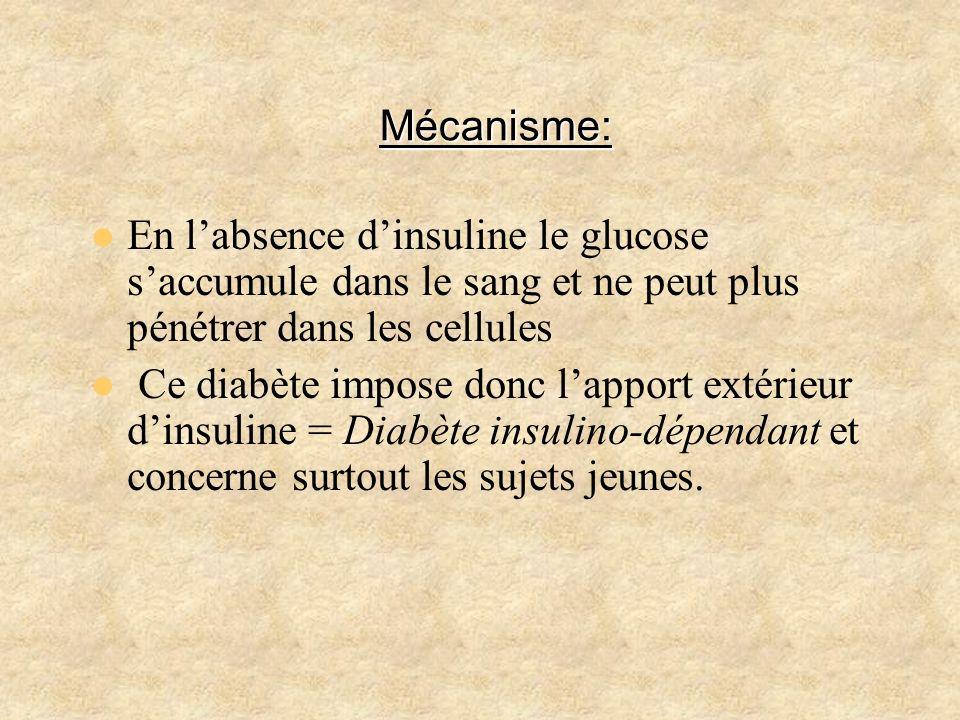 Mécanisme: En labsence dinsuline le glucose saccumule dans le sang et ne peut plus pénétrer dans les cellules Ce diabète impose donc lapport extérieur