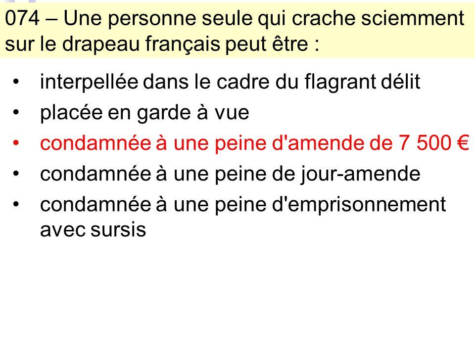 074 – Une personne seule qui crache sciemment sur le drapeau français peut être : interpellée dans le cadre du flagrant délit placée en garde à vue condamnée à une peine d amende de 7 500 condamnée à une peine de jour-amende condamnée à une peine d emprisonnement avec sursis