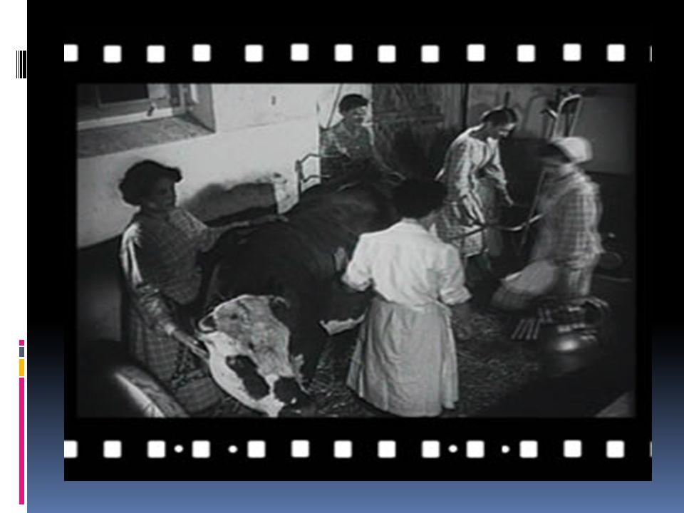 Engagements et modernisation, les prémices dune reconnaissance La JACF ( lassociation de la jeunesse agricole catholique féminine) va marquer les années 1950-1960 de ses combats, tant sur le plan professionnel que sur le plan privé.