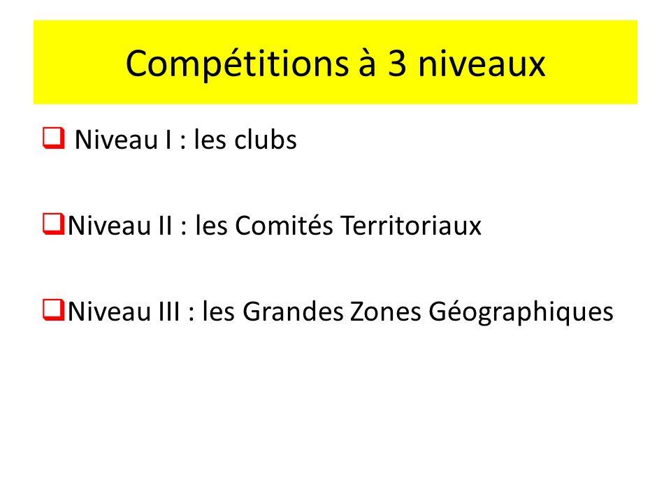 Projet Compétition Jeunes Détection Formation par la compétition Permettre aux joueurs de rester dans leurs clubs Remise à plat des compétitions jeune