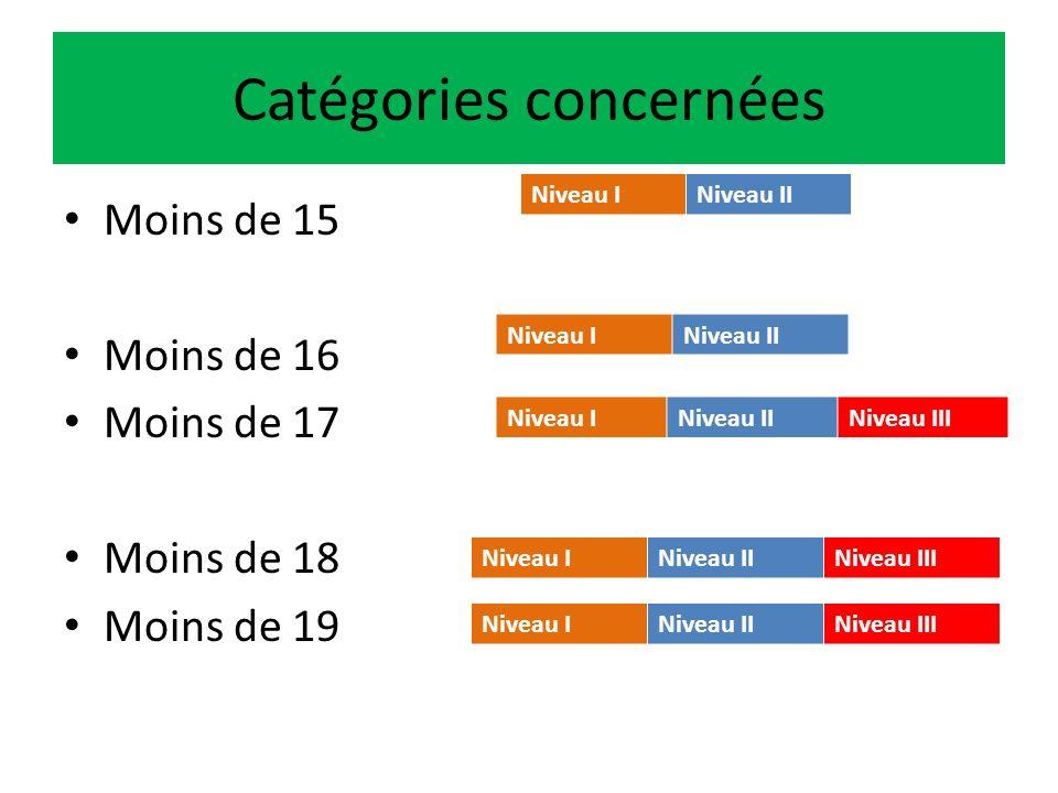 Compétitions à 3 niveaux Niveau I : les clubs Niveau II : les Comités Territoriaux Niveau III : les Grandes Zones Géographiques