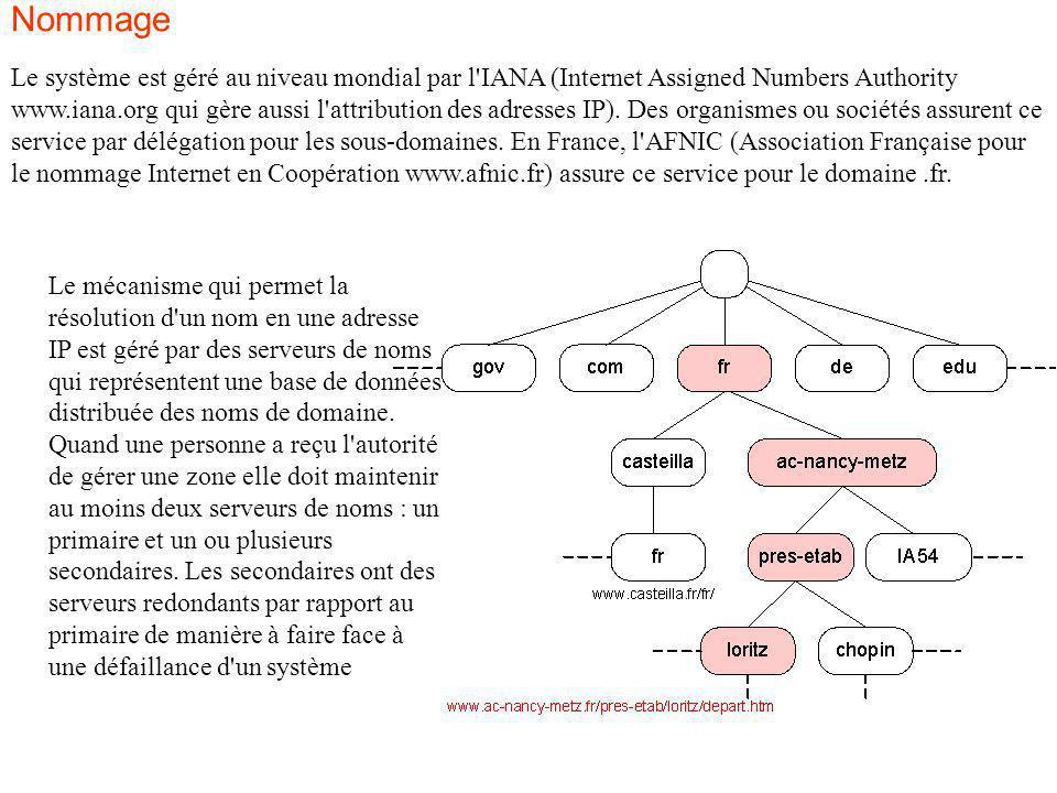 Le système est géré au niveau mondial par l'IANA (Internet Assigned Numbers Authority www.iana.org qui gère aussi l'attribution des adresses IP). Des