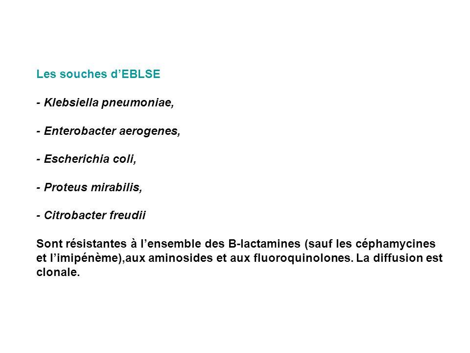 Les souches dEBLSE - Klebsiella pneumoniae, - Enterobacter aerogenes, - Escherichia coli, - Proteus mirabilis, - Citrobacter freudii Sont résistantes
