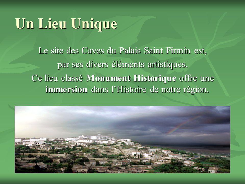 Un Lieu Unique Le site des Caves du Palais Saint Firmin est, par ses divers éléments artistiques. Ce lieu classé Monument Historique offre une immersi