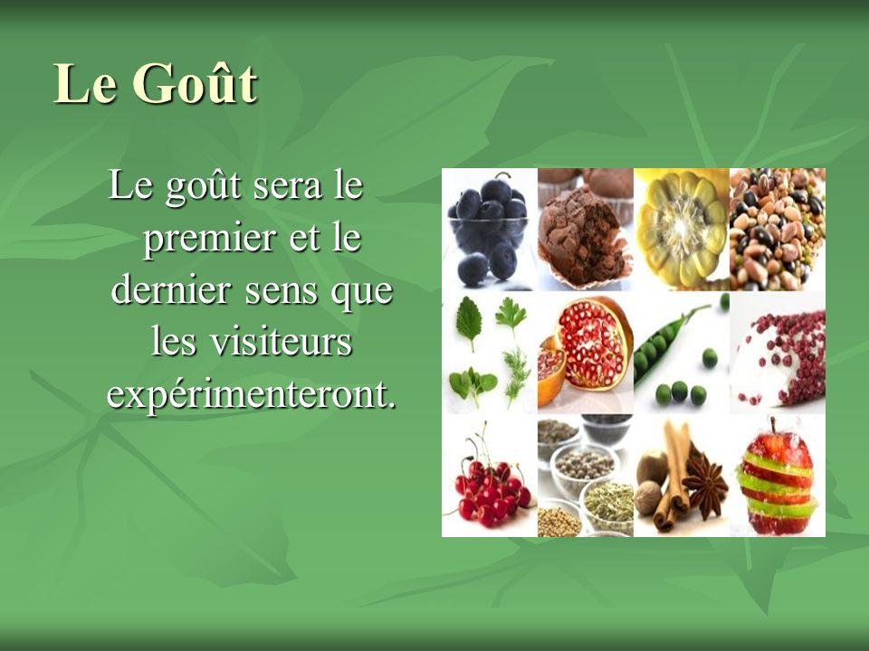 Le Goût Le goût sera le premier et le dernier sens que les visiteurs expérimenteront.