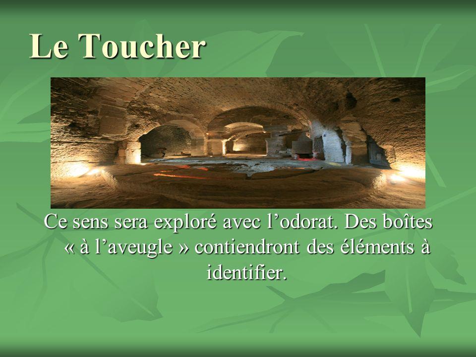 Le Toucher Ce sens sera exploré avec lodorat. Des boîtes « à laveugle » contiendront des éléments à identifier.
