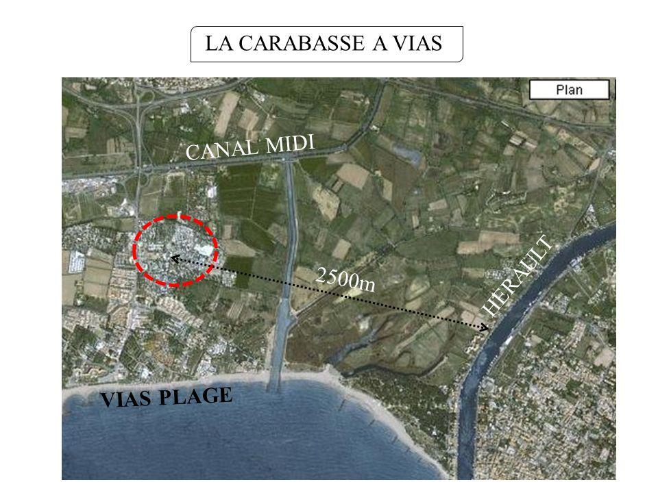 LA CARABASSE A VIAS HERAULT VIAS PLAGE CANAL MIDI 2500m