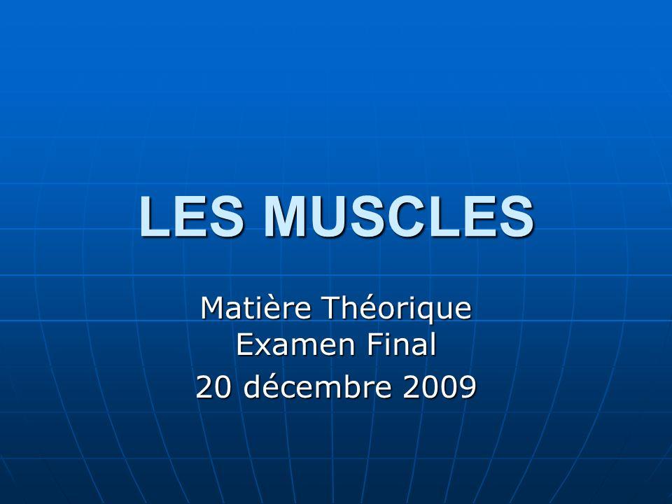 LES MUSCLES Matière Théorique Examen Final 20 décembre 2009