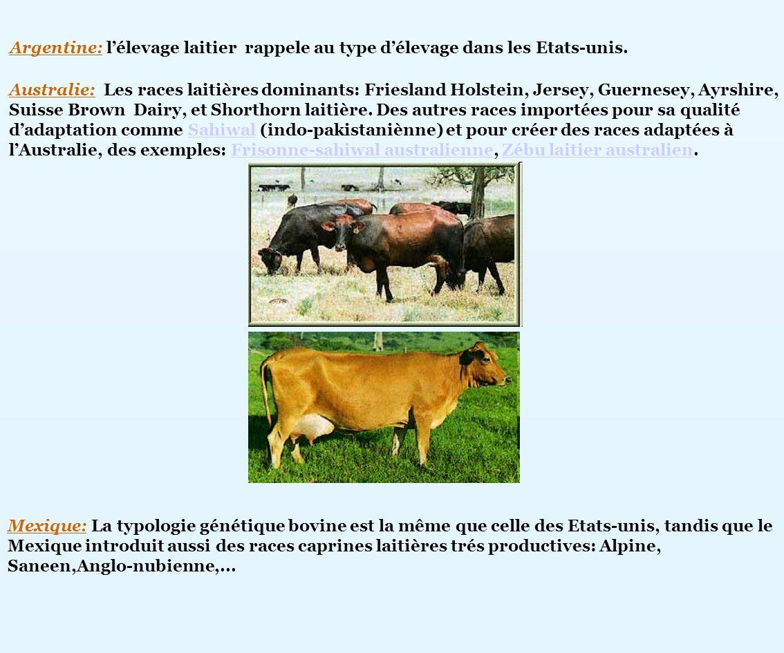 Australie: Les races laitières dominants: Friesland Holstein, Jersey, Guernesey, Ayrshire, Suisse Brown Dairy, et Shorthorn laitière. Des autres races