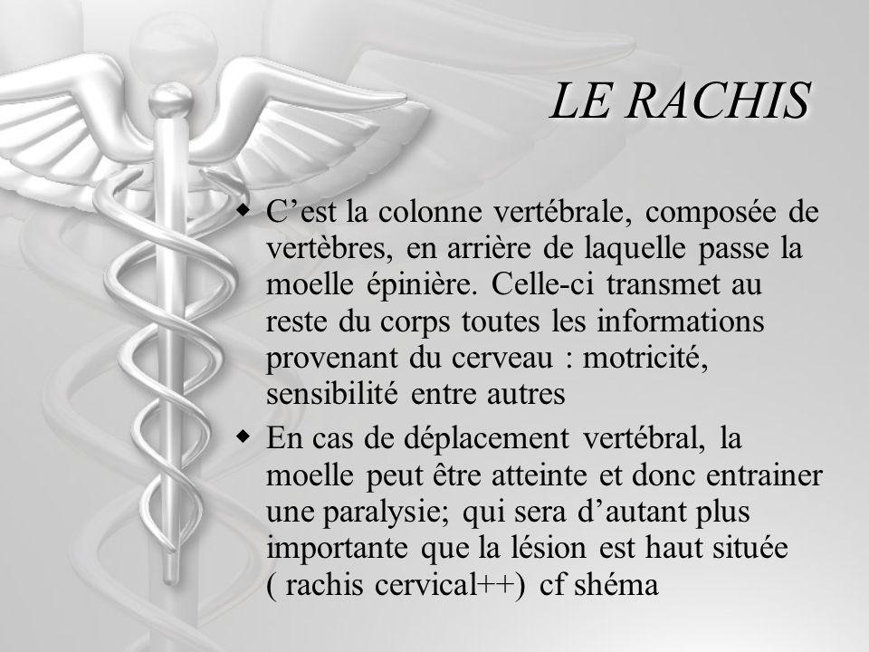 LE RACHIS Cest la colonne vertébrale, composée de vertèbres, en arrière de laquelle passe la moelle épinière. Celle-ci transmet au reste du corps tout