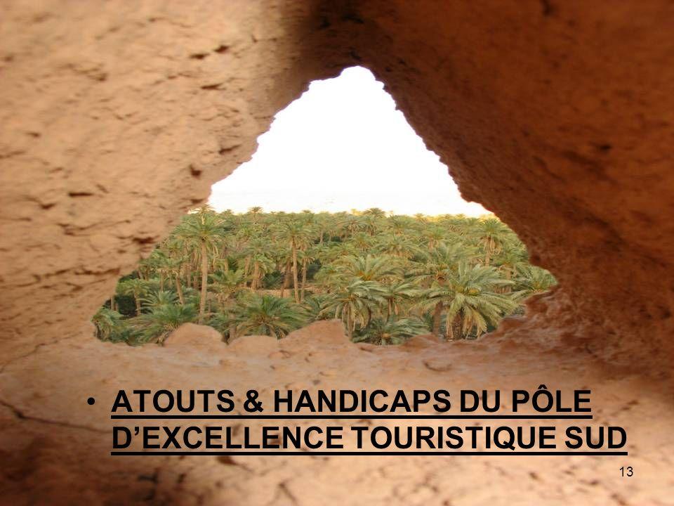 ATOUTS & HANDICAPS DU PÔLE DEXCELLENCE TOURISTIQUE SUD 13