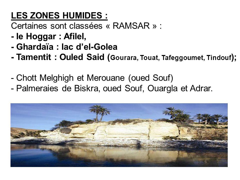 LES ZONES HUMIDES : Certaines sont classées « RAMSAR » : - le Hoggar : Afilel, - Ghardaïa : lac del-Golea - Tamentit : Ouled Said ( Gourara, Touat, Ta