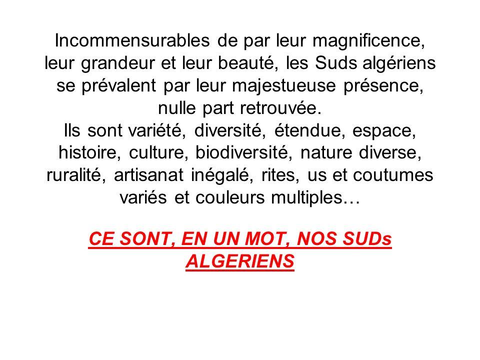 Incommensurables de par leur magnificence, leur grandeur et leur beauté, les Suds algériens se prévalent par leur majestueuse présence, nulle part ret