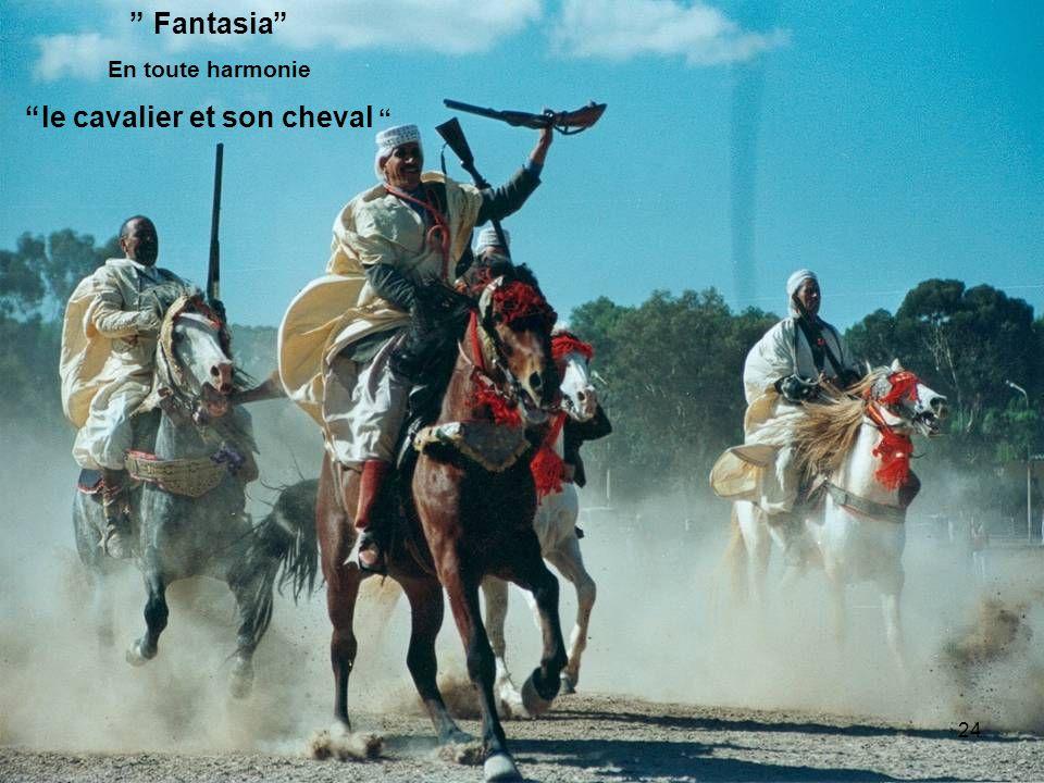Fantasia En toute harmonie le cavalier et son cheval 24