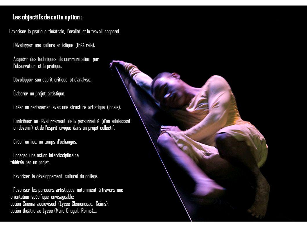 Les objectifs de cette option : Favoriser la pratique théâtrale, l'oralité et le travail corporel. Développer une culture artistique (théâtrale). Acqu