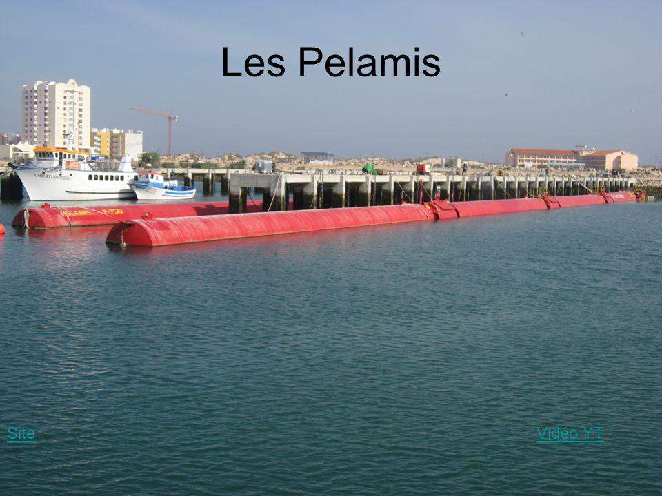 Les Pelamis SiteVidéo YT