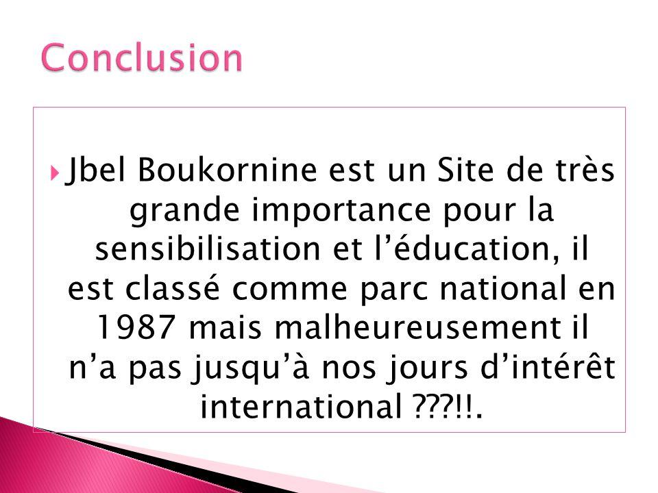 Jbel Boukornine est un Site de très grande importance pour la sensibilisation et léducation, il est classé comme parc national en 1987 mais malheureus