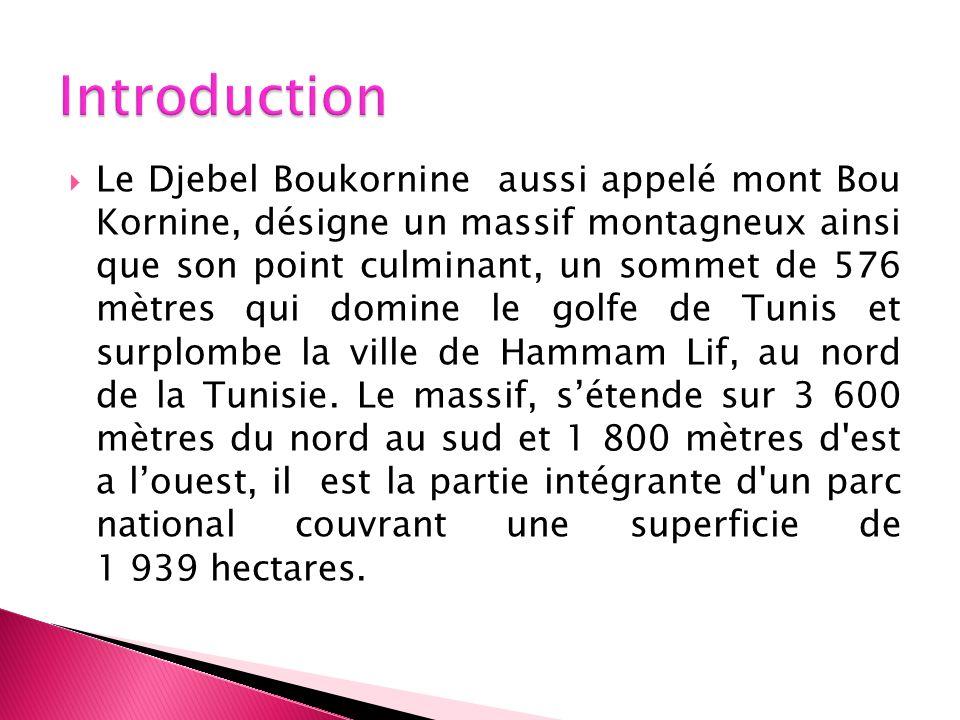 Le Djebel Boukornine aussi appelé mont Bou Kornine, désigne un massif montagneux ainsi que son point culminant, un sommet de 576 mètres qui domine le