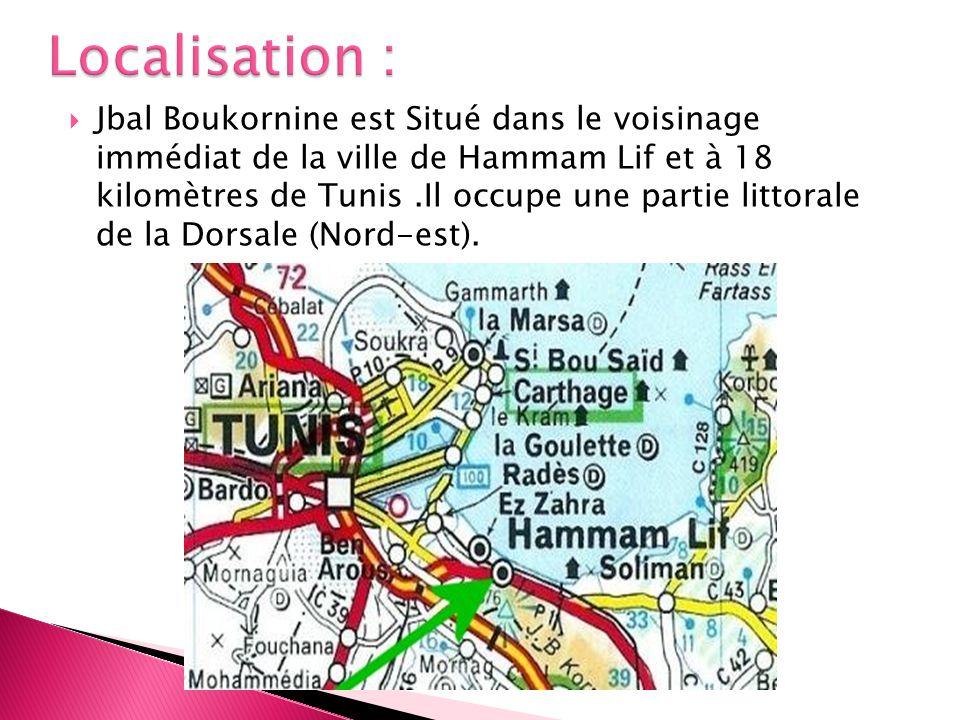 Jbal Boukornine est Situé dans le voisinage immédiat de la ville de Hammam Lif et à 18 kilomètres de Tunis.Il occupe une partie littorale de la Dorsal