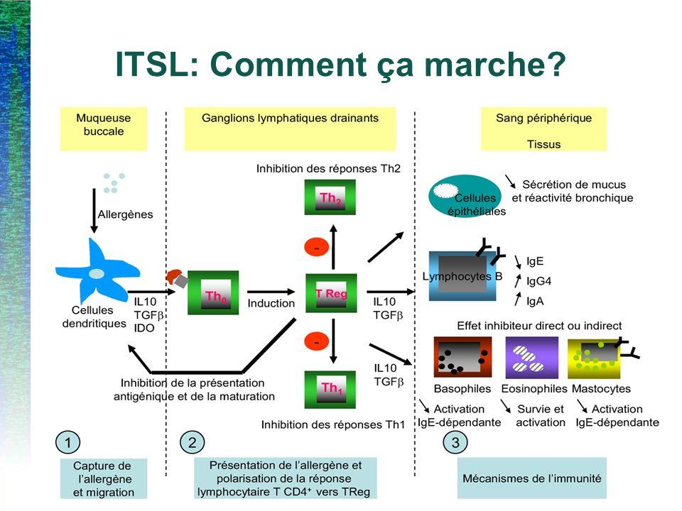 ITSL: Comment ça marche?