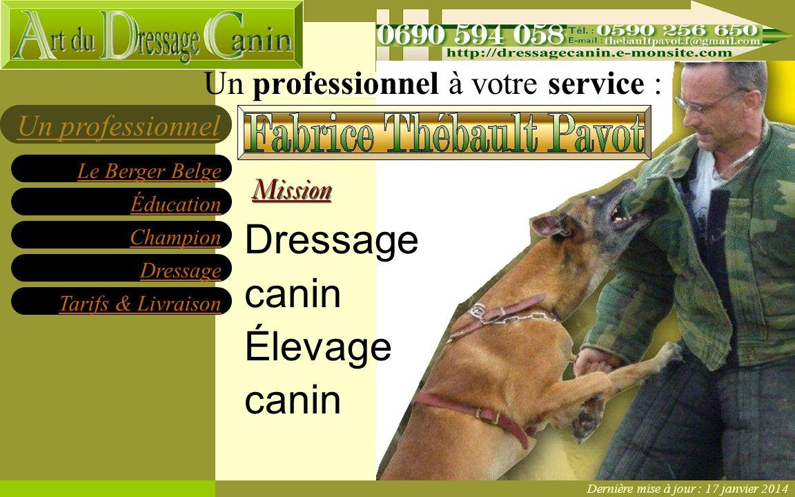 Éducation Champion Dressage Tarifs & Livraison Le Berger Belge Un professionnelMission Dressage canin Élevage canin professionnelservice Un professionnel à votre service : Dernière mise à jour : 17 janvier 2014