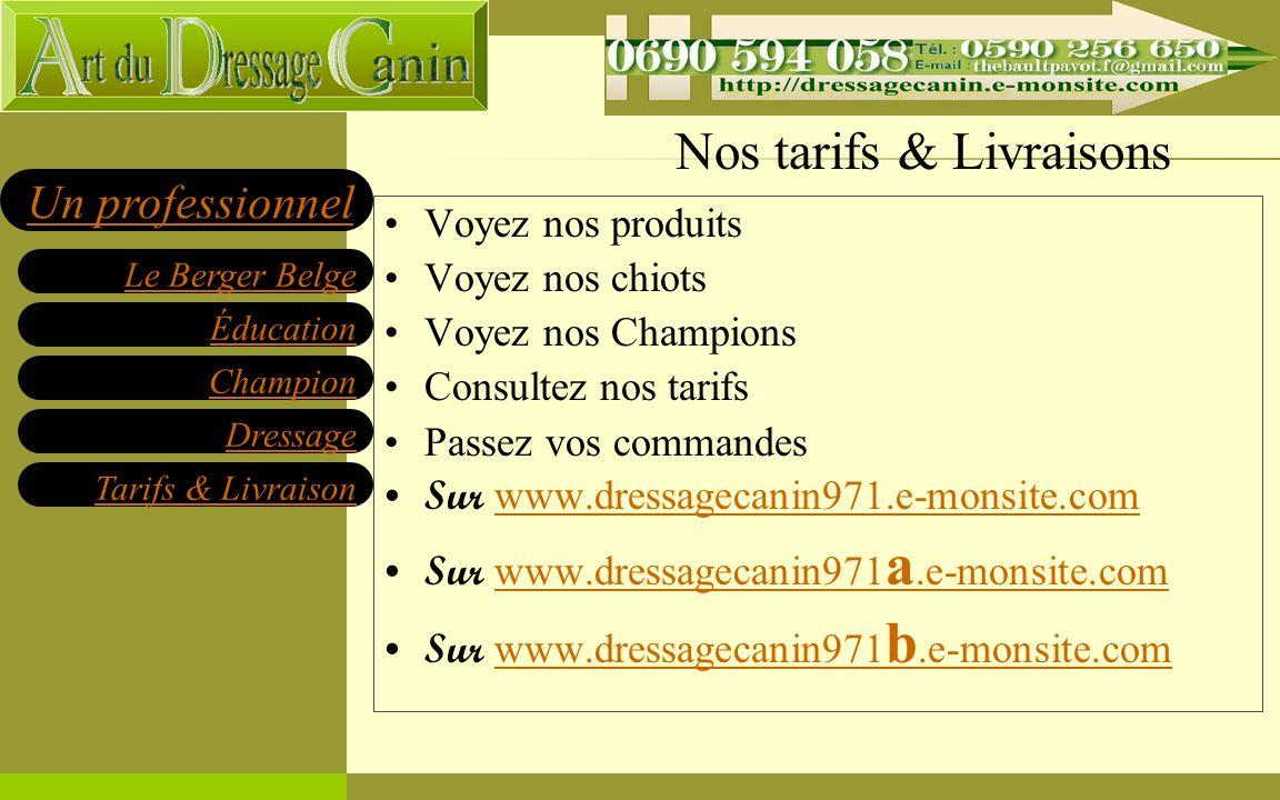 Éducation Champion Dressage Tarifs & Livraison Le Berger Belge Un professionnel Nos tarifs & Livraisons Voyez nos produits Voyez nos chiots Voyez nos Champions Consultez nos tarifs Passez vos commandes Sur www.dressagecanin971.e-monsite.com www.dressagecanin971.e-monsite.com Sur www.dressagecanin971 a.e-monsite.com www.dressagecanin971 a.e-monsite.com Sur www.dressagecanin971 b.e-monsite.com www.dressagecanin971 b.e-monsite.com