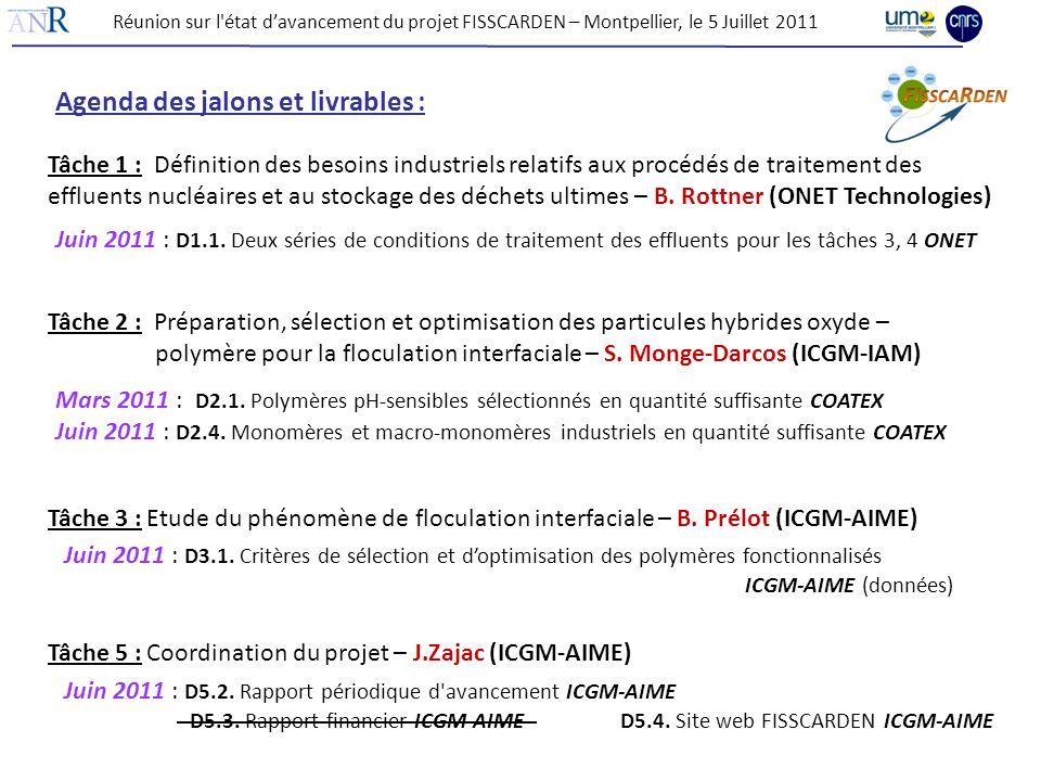 Réunion sur l'état davancement du projet FISSCARDEN – Montpellier, le 5 Juillet 2011 Agenda des jalons et livrables : Juin 2011 : D1.1. Deux séries de