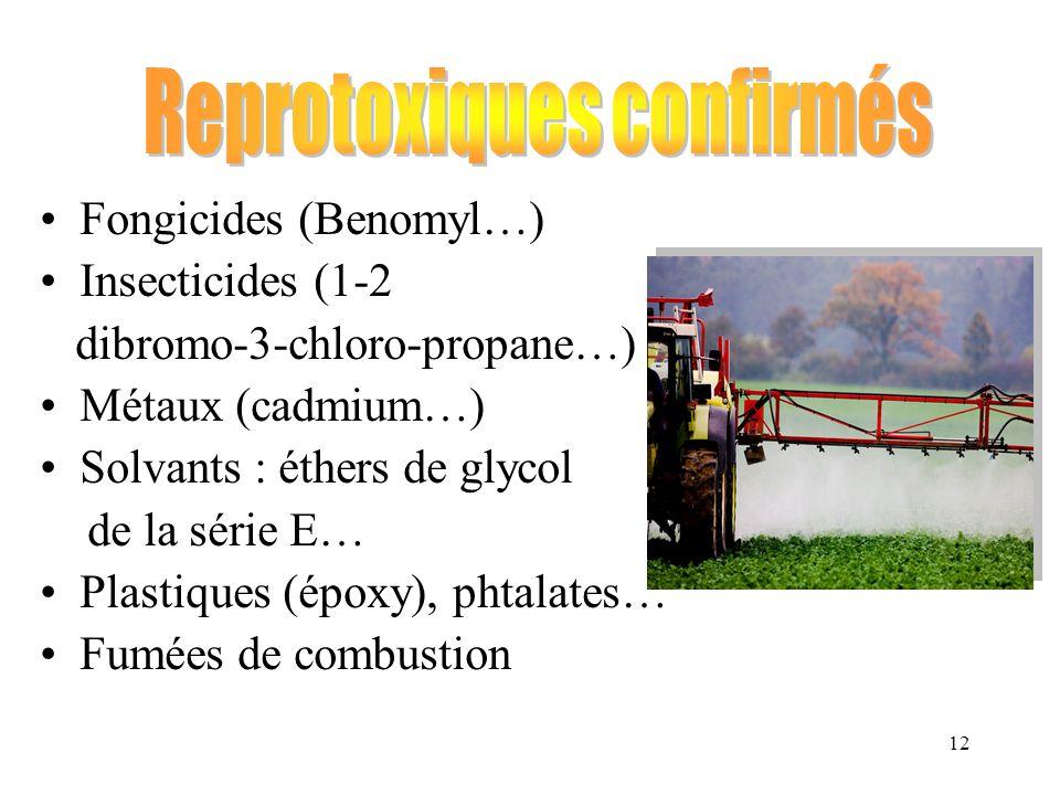12 Fongicides (Benomyl…) Insecticides (1-2 dibromo-3-chloro-propane…) Métaux (cadmium…) Solvants : éthers de glycol de la série E… Plastiques (époxy),