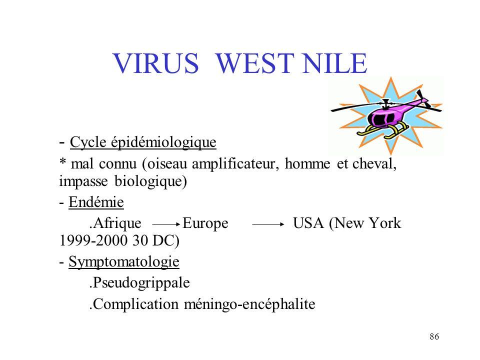 86 VIRUS WEST NILE - Cycle épidémiologique * mal connu (oiseau amplificateur, homme et cheval, impasse biologique) - Endémie.Afrique Europe USA (New Y