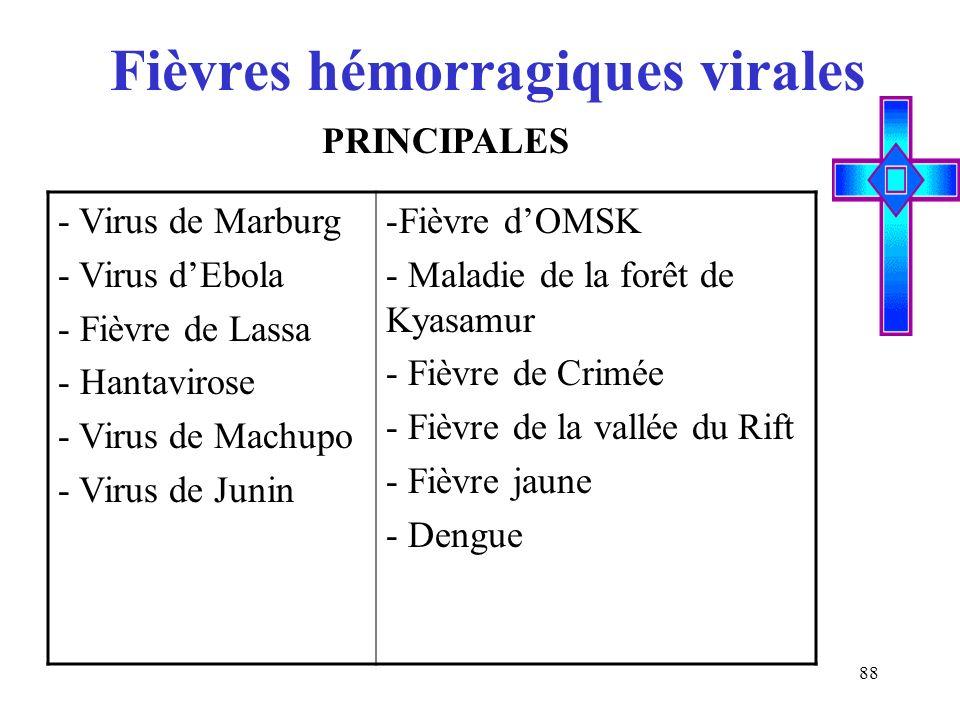 88 Fièvres hémorragiques virales - Virus de Marburg - Virus dEbola - Fièvre de Lassa - Hantavirose - Virus de Machupo - Virus de Junin -Fièvre dOMSK -
