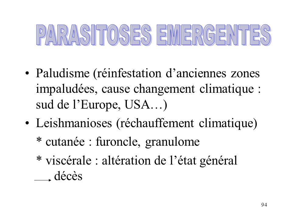 94 Paludisme (réinfestation danciennes zones impaludées, cause changement climatique : sud de lEurope, USA…) Leishmanioses (réchauffement climatique)