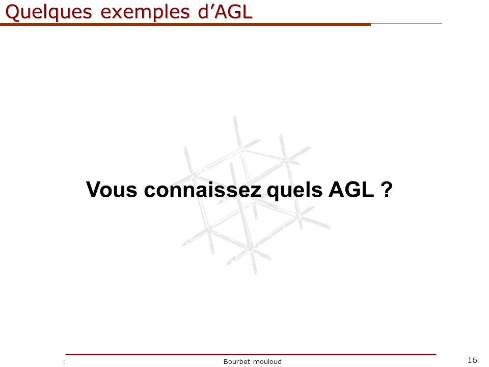 16 Christophe Tricot Bourbet mouloud Quelques exemples dAGL Vous connaissez quels AGL ?