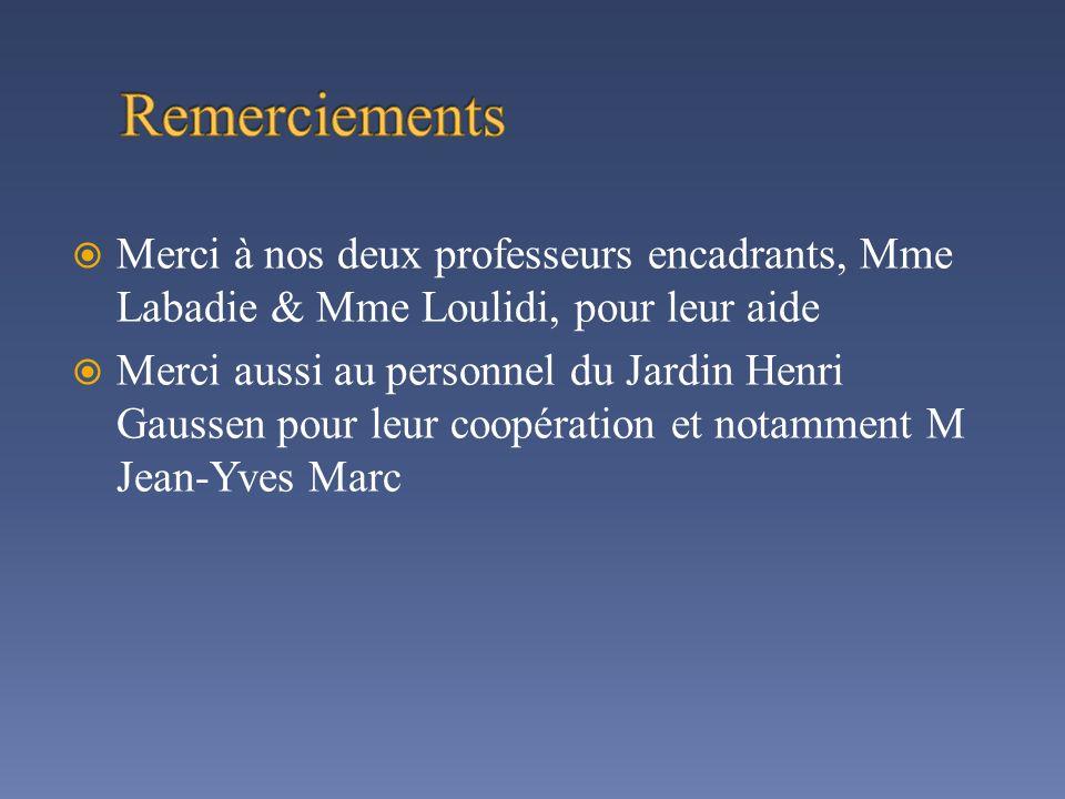 Merci à nos deux professeurs encadrants, Mme Labadie & Mme Loulidi, pour leur aide Merci aussi au personnel du Jardin Henri Gaussen pour leur coopérat