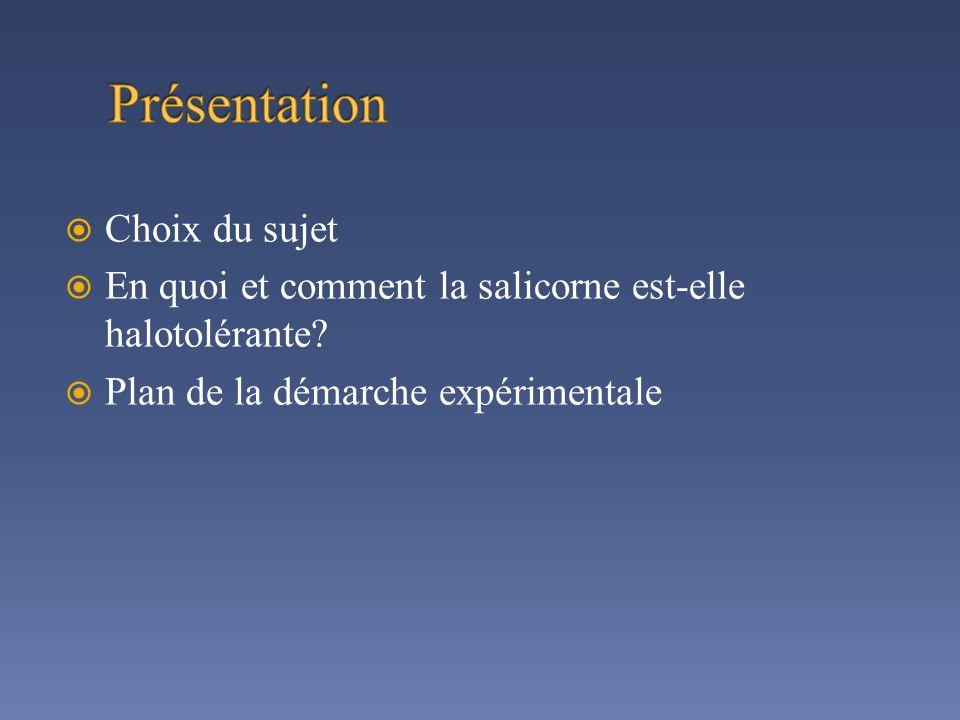 Choix du sujet En quoi et comment la salicorne est-elle halotolérante? Plan de la démarche expérimentale