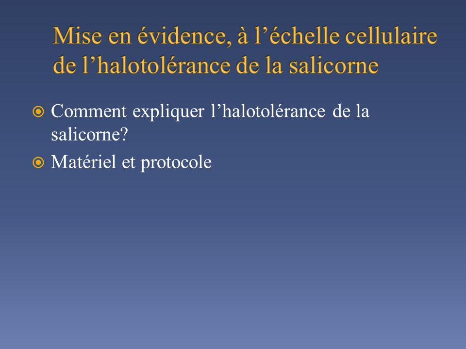 Comment expliquer lhalotolérance de la salicorne? Matériel et protocole