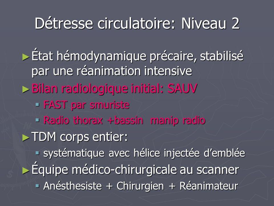 Détresse circulatoire: Niveau 2 État hémodynamique précaire, stabilisé par une réanimation intensive État hémodynamique précaire, stabilisé par une ré