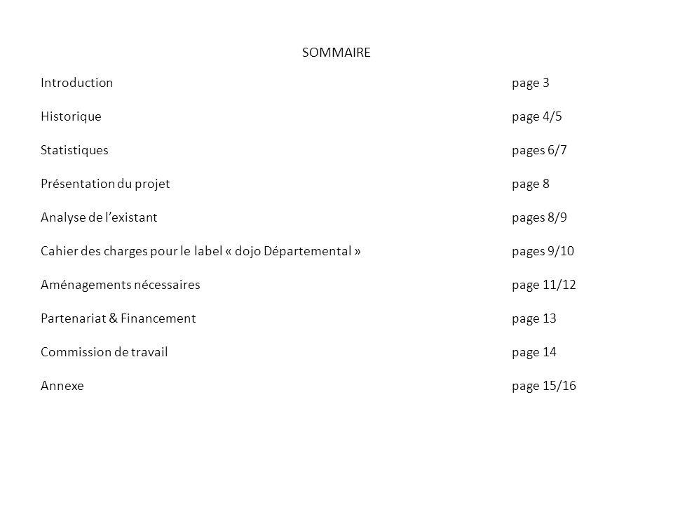 SOMMAIRE Introductionpage 3 Historiquepage 4/5 Statistiquespages 6/7 Présentation du projetpage 8 Analyse de lexistantpages 8/9 Cahier des charges pou
