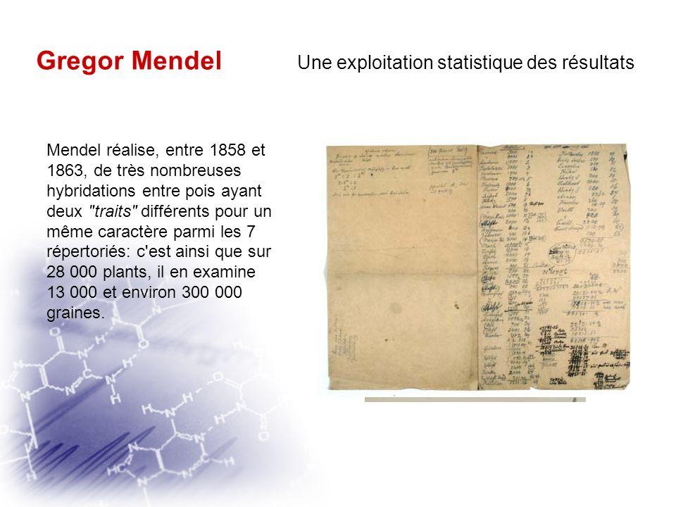Gregor Mendel Une méthode scientifique rigoureuse « Les plantes doivent posséder des caractères différentiels constants »