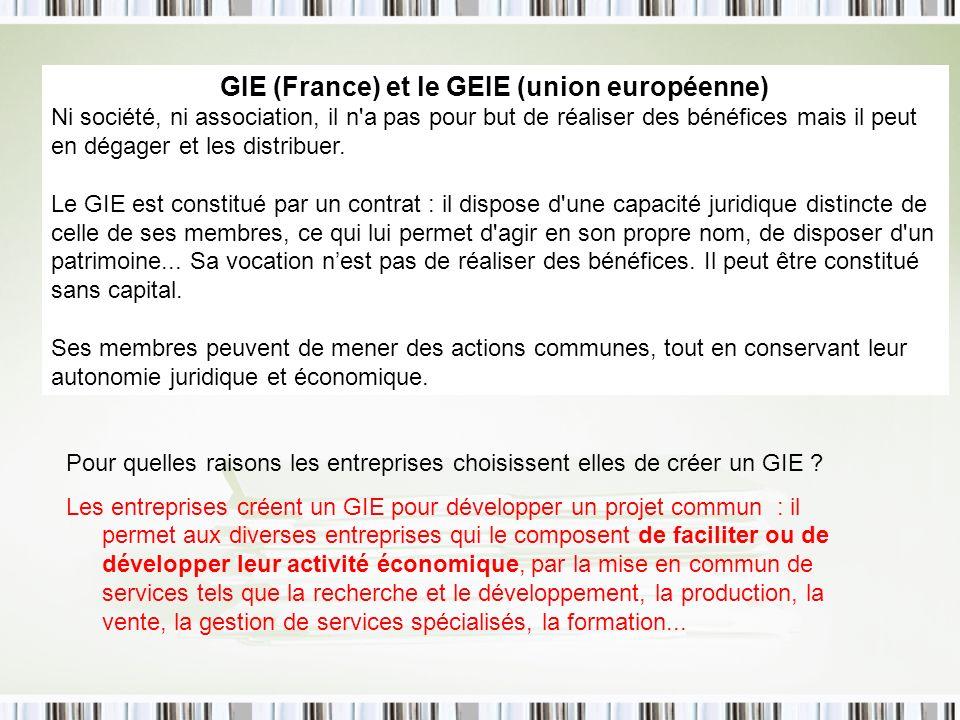 GIE (France) et le GEIE (union européenne) Ni société, ni association, il n a pas pour but de réaliser des bénéfices mais il peut en dégager et les distribuer.