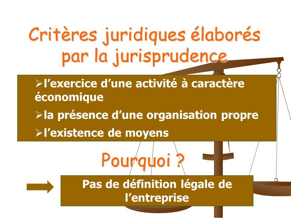 Critères juridiques élaborés par la jurisprudence lexercice dune activité à caractère économique la présence dune organisation propre lexistence de moyens Pourquoi .