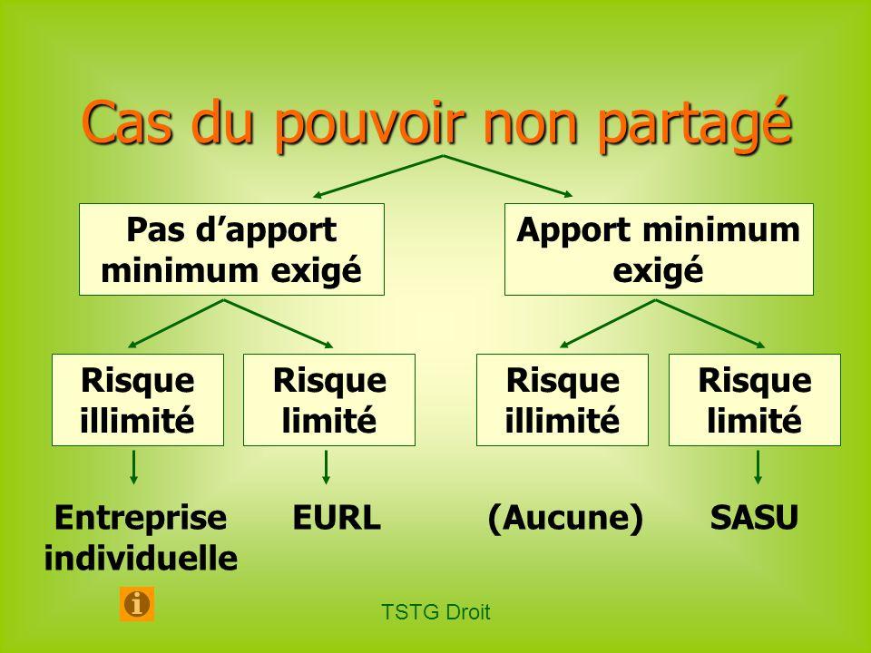TSTG Droit Pas dapport minimum exigé Apport minimum exigé SNC Cas du pouvoir partagé Risque illimité Risque limité Risque illimité Risque limité SARLSA SAS SE (Aucune)