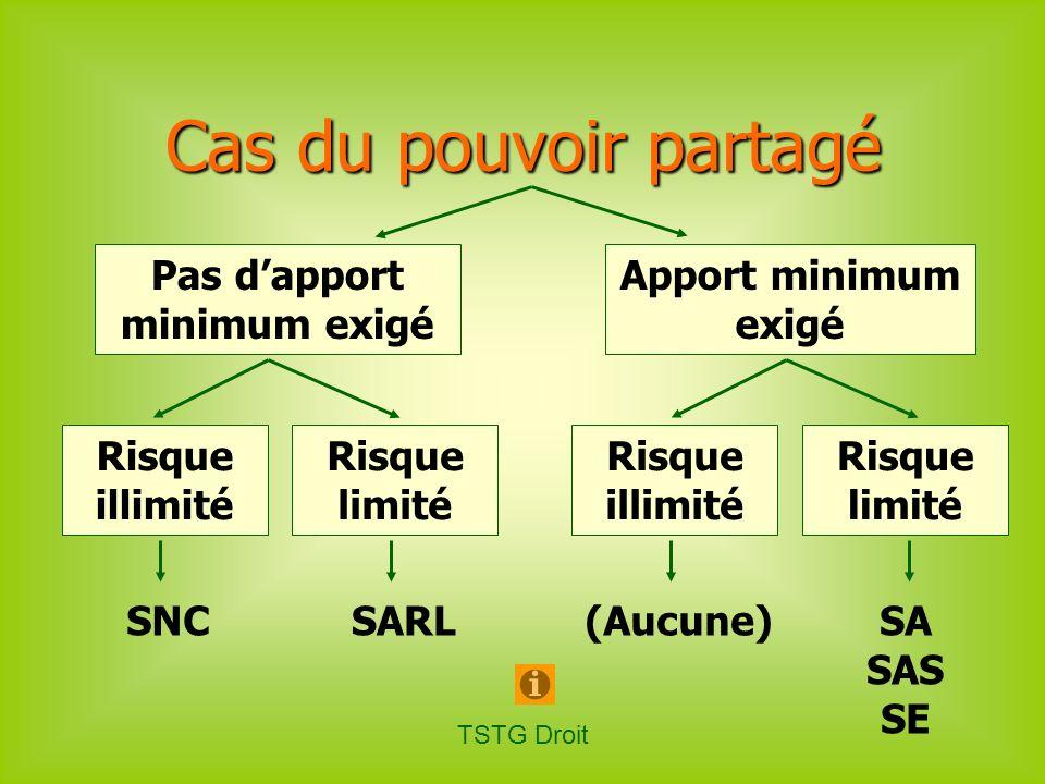 TSTG Droit Pas dapport minimum exigé Apport minimum exigé SNC Cas du pouvoir partagé Risque illimité Risque limité Risque illimité Risque limité SARLS
